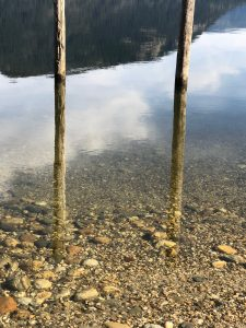posts in reflective water